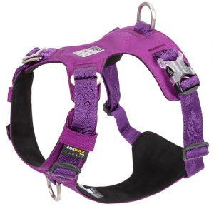 Cordura Purple